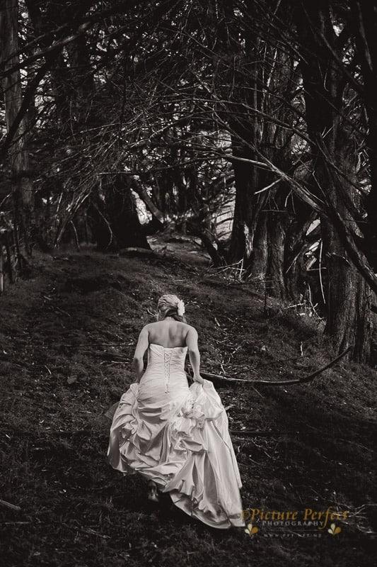 palmerston north wedding photographer 0004