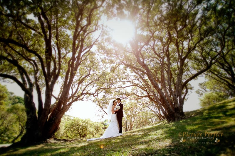 palmerston north wedding photographer 0011