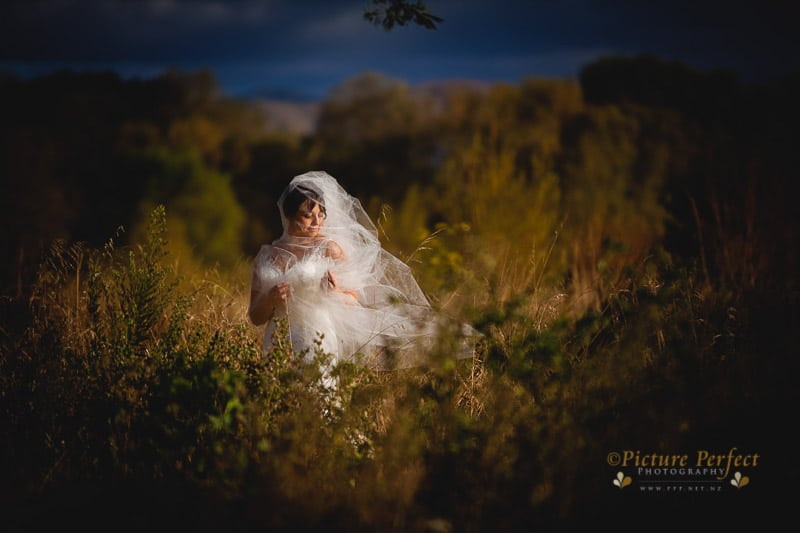palmerston north wedding photographer 0024