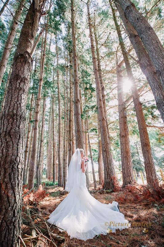 palmerston north wedding photographer 0061