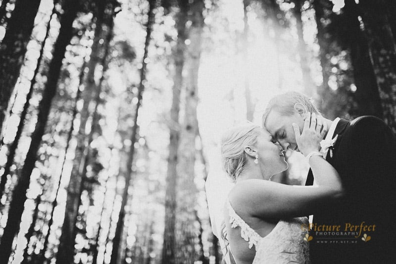palmerston north wedding photographer 0068