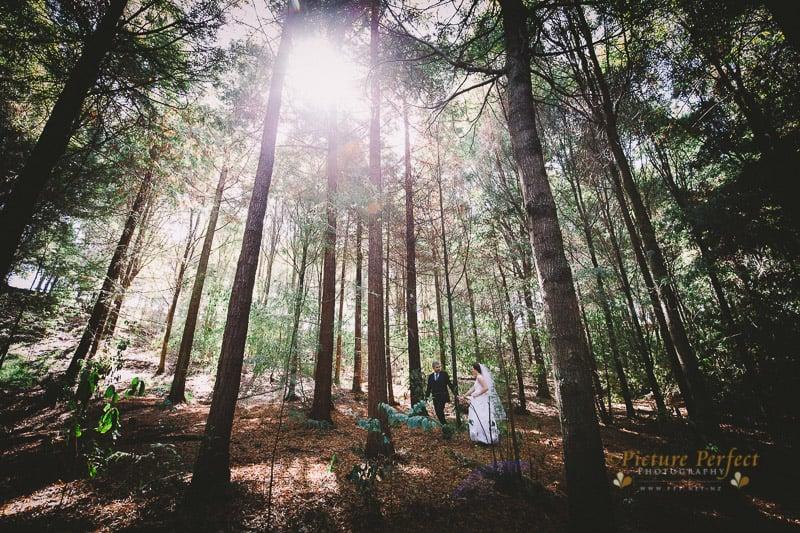 palmerston north wedding photographer 0091