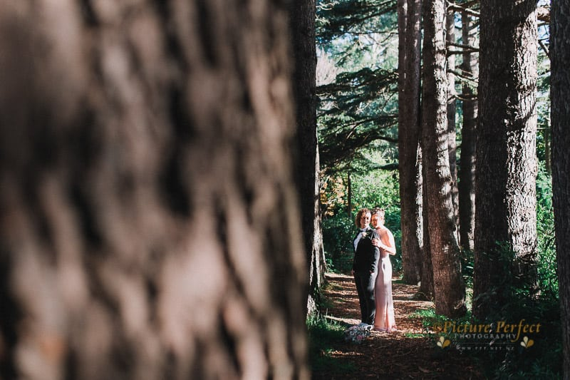 palmerston north wedding photographer 0134
